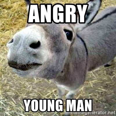Assumptions Donkey - AnGRY  Young Man