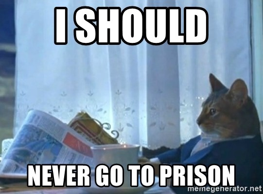 newspaper cat realization - I should  never go to prison