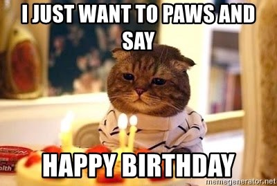 Birthday Cat - I just want to paws and say Happy Birthday
