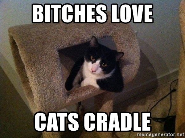 cool cat - bitches love cats cradle