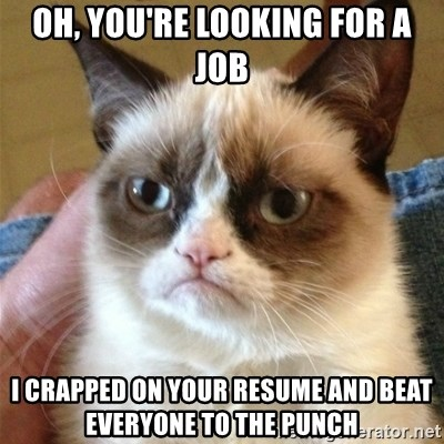 Grumpy Cat  - oh, you're looking for a job i crapped on your resume and beat everyone to the punch
