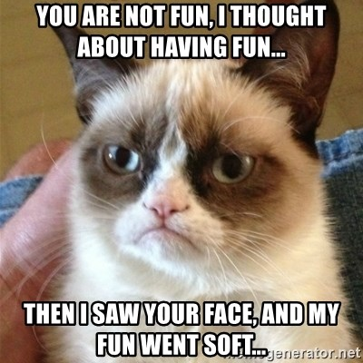 Grumpy Cat  - you are not fun, i thought about having fun... then i saw your face, and my fun went soft...