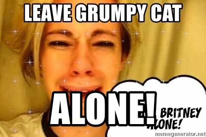 leave britney alone - leave grumpy cat  alone!