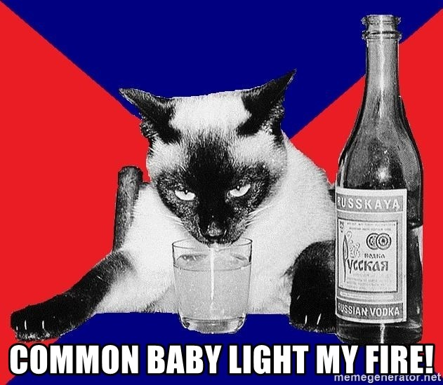 Alco-cat -  COMMON BABY LIGHT MY FIRE!