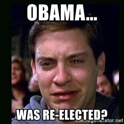 crying peter parker - Obama... Was Re-elected?