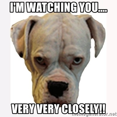 stahp guise - I'm wAtching you.... Very very closely!!