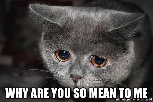why are you so mean to me - sad cat | Meme Generator