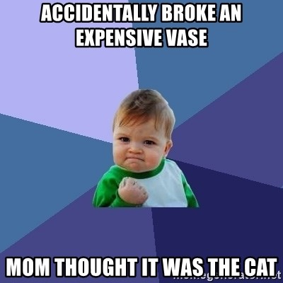 Success Kid - accidentally broke an expensive vase mom thought it was the cat