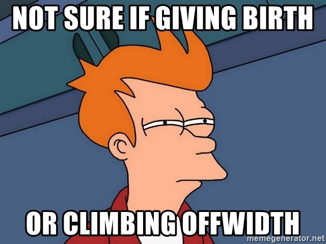 Futurama Fry - Not sUre if giving birth Or climbing offwidth