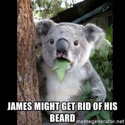 Koala can't believe it -  James might get rid of his beard