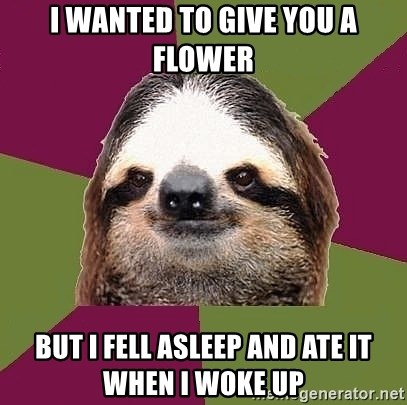 Just-Lazy-Sloth - I wanted to give you a flower But I fell asleep and ate it when I woke up