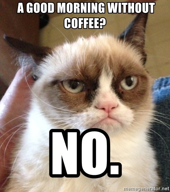 Grumpy Cat 2 -  a good morning without coffee? NO.