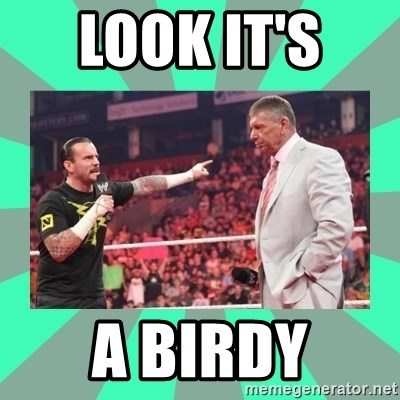 CM Punk Apologize! - LOOK IT'S  A BIRDY