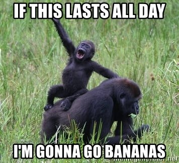 Happy Gorilla - IF THIS LASTS ALL DAY I'M GONNA GO BANANAS