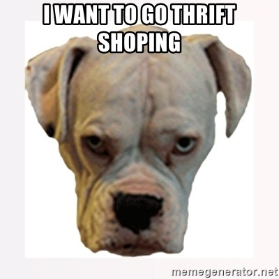 stahp guise - I WANT TO GO THRIFT SHOPING