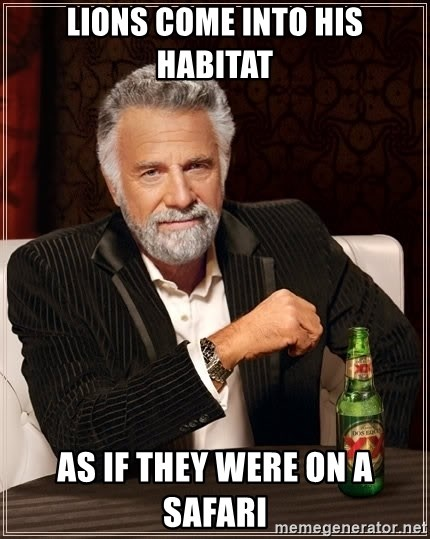 The Most Interesting Man In The World - LIons come into his habitat as if they were on a safari