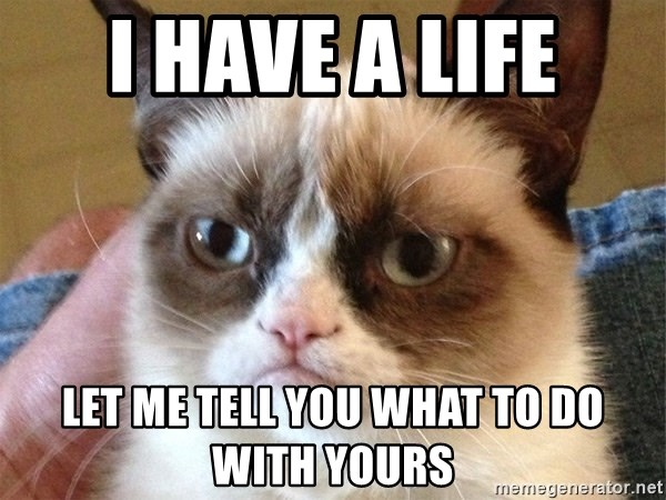 Angry Cat Meme - I HAVE A LIFE let me tell you what to do with yours