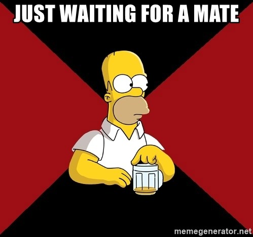 Homer Jay Simpson - JUST WAITING FOR A MATE