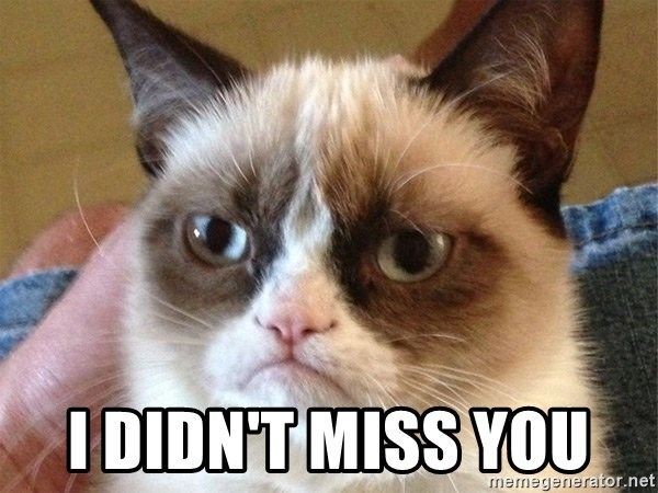 Angry Cat Meme -  I didn't miss you