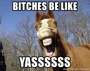 Horse - Bitches be like yassssss