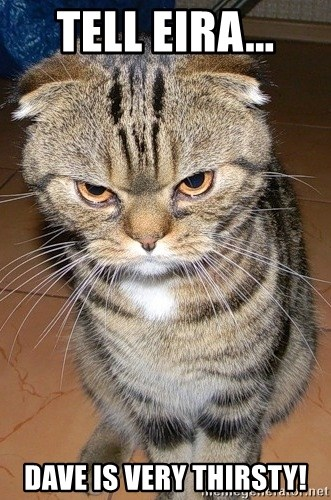 angry cat 2 - Tell Eira... Dave is VERY THIRSTY!