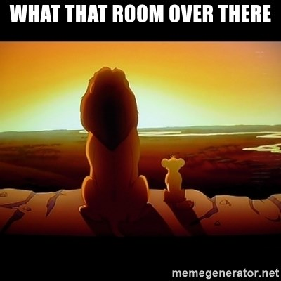 Simba - WHAT THAT ROOM OVER THERE