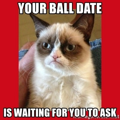 No cat - Your ball date is waiting for you to ask