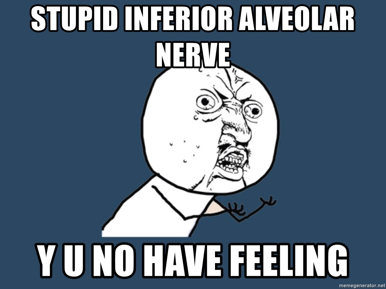 Y U No - stupid inferior alveolar nerve y u no have feeling