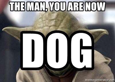 Master Yoda - the man, you are now          dog