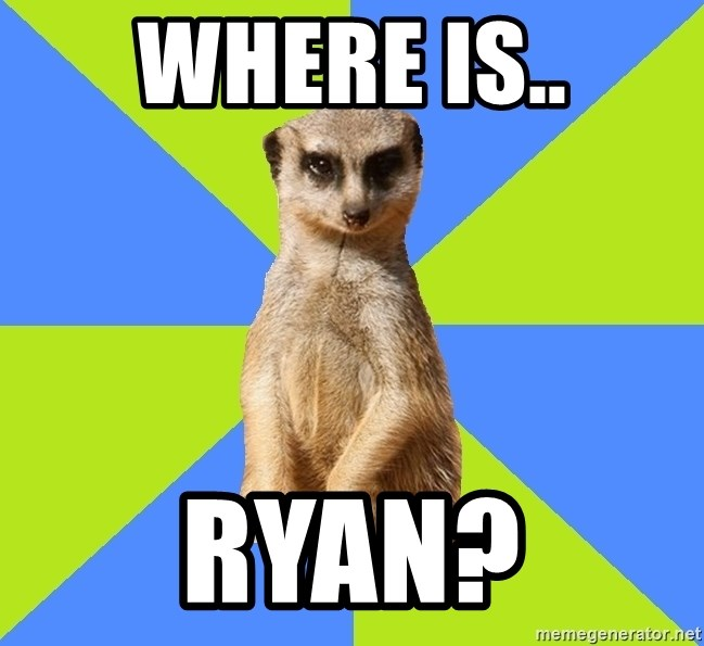 Med Student Meerkat - where is.. ryan?
