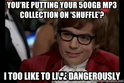 I too like to live dangerously - you're PUTTING YOUR 500GB MP3 COLLECTION on 'SHUFFLE'?                                        .