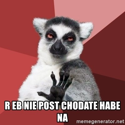 Chill Out Lemur -  R Eb Nie post chodate habe na