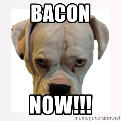 stahp guise - BACON NOW!!!