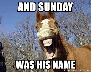 Horse - and Sunday was his name