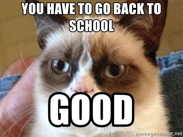 Angry Cat Meme - You have to go back To school Good