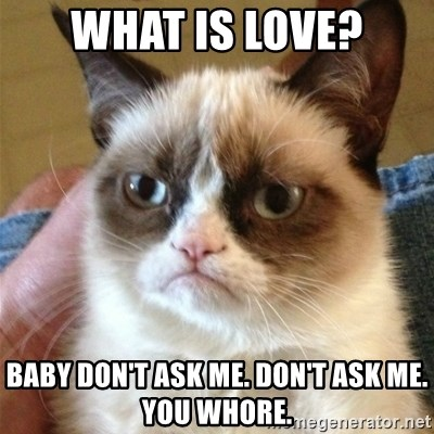 Grumpy Cat  - what is love? baby don't ask me. don't ask me. you whore.
