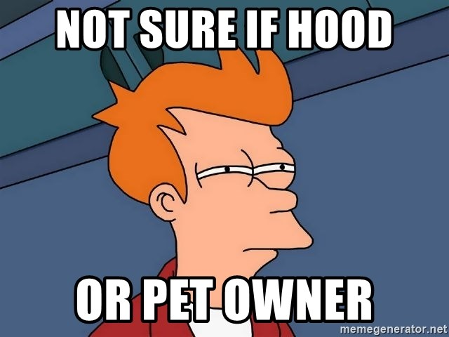 Futurama Fry - Not sure if hood Or pet owner