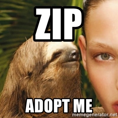 Whisper Sloth - Zip Adopt me