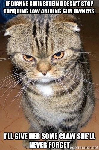 angry cat 2 - if dianne swinestein doesn't stop torquing law abiding gun owners, i'll give her some claw she'll never forget