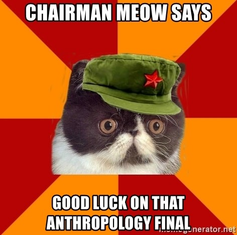 Communist Cat - chairman meow says good luck on that anthropology final
