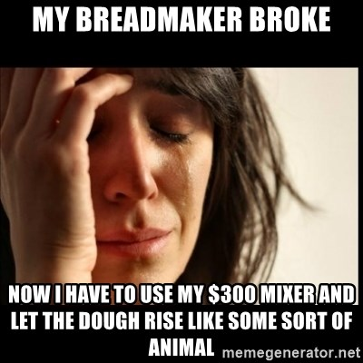 First World Problems - my Breadmaker broke now i have to use my $300 mixer and let the dough rise like some sort of animal