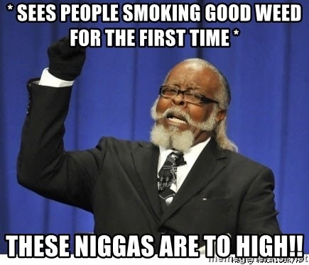 Too high - * sees people smoking good weed for the first time * These niggas are to high!!