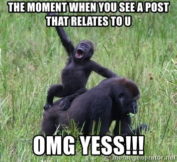 Happy Gorilla - the moment when you see a post that relates to u omg yess!!!