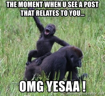 Happy Gorilla - the moment when u see a post that relates to you... omg yesaa !