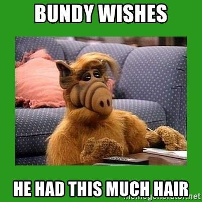 alf - BUNDY WISHES HE HAD THIS MUCH HAIR