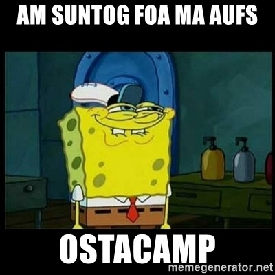 Don't you, Squidward? - AM SUNTOG FOA MA AUFS  OSTACAMP