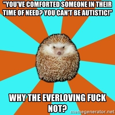 """Autistic Hedgehog - """"You've comforted someone in their time of need? You can't be autistic!"""" Why the everloving fuck not?"""