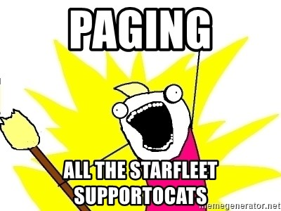 X ALL THE THINGS - paging all the starfleet supportocats
