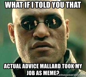 What if I told you / Matrix Morpheus - what if i told you that actual advice mallard took my job as meme?