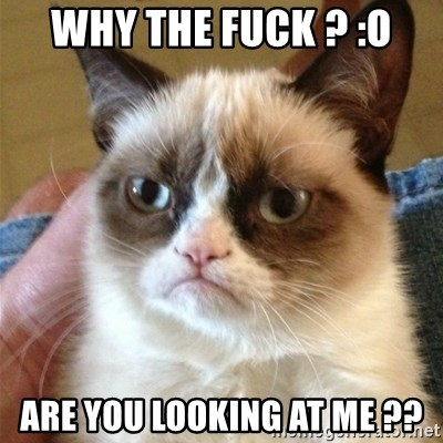 Grumpy Cat  - WHY THE FUCK ? :O ARE YOU LOOKING AT ME ??